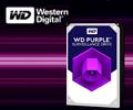 Экстрабонусы 7% от цены за жесткие диски WD Purple.
