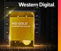 Экстрабонусы до 2000 рублей за жёсткие диски WD Gold.