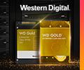 Бонусы в пятикратном размере при покупке жёстких дисков и SSD WD Gold.